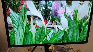 4K Монитор Samsung U28E590D подробный большой обзор