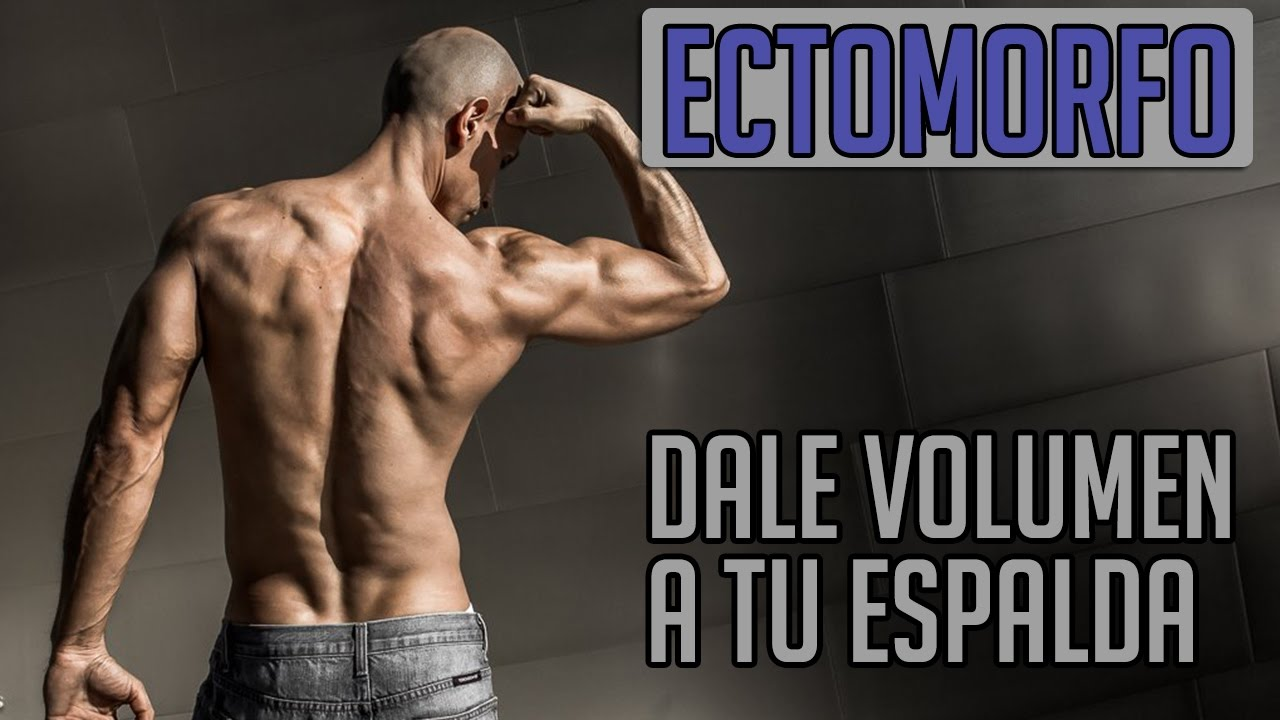 rutina entrenamiento para ectomorfos