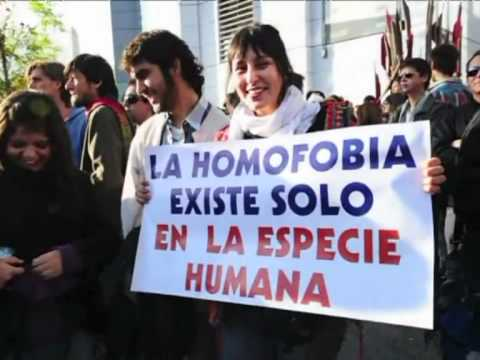 Thousands march in Chile's Gay Pride parade