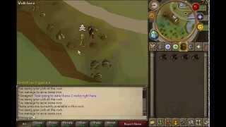 Runescape- Great F2P Money Making Guide