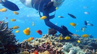 沖縄アイランドブリーズ at ブセナの海 Now thumbnail