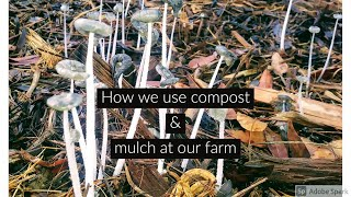 How we use compost and mulch at our farm