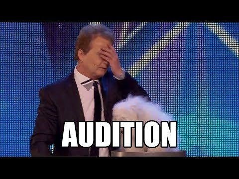 Marc Métral and talking dog Wendy Britain's Got Talent 2015 Audition|GTF