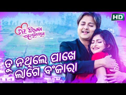 TU NATHILE PAKHE LAGE BANJARA    ତୁ ନଥିଲେ ପାଖେ ଲାଗେ ବଂଜାରା    Sarthak Music's 20th Movie