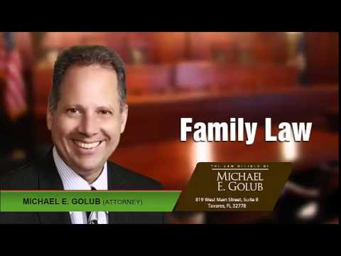 Who Decides The Parenting Plan Schedule? Tavares, Florida | (352) 533 – 4647