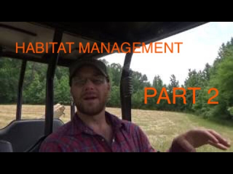 Part 2:  Whitetail Deer Habitat Management (Maximizing Carrying Capacity)