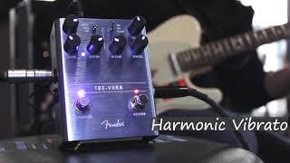Fender Tre-Verb Pedal | Reverb & Tremolo Demo | Music Junction