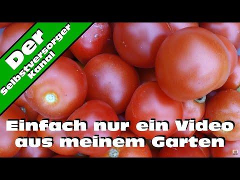 Ein komplettes Selbstversorger - Gartenjahr in Spielfilmlänge. Teil 2