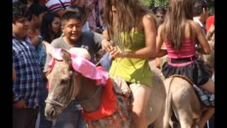 Repeat youtube video Carrera de Burros Jardin Principal Huetamo