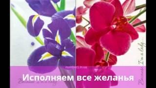 канцелярські товари київ(, 2013-09-14T14:22:46.000Z)