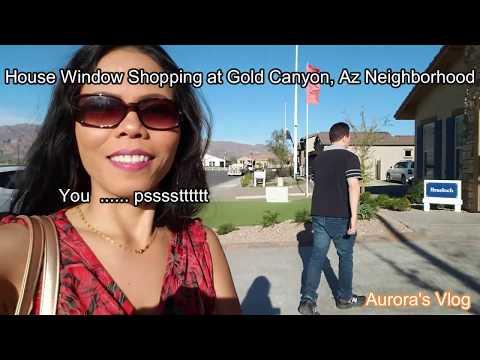 Exploring David Weekley Braeloch Model Homes in Gold Canyon Arizona | Aurora's Vlog