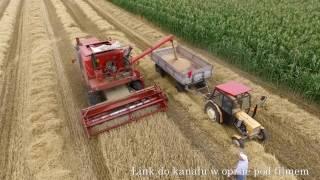 Rolnik Szuka - Uwaga Nowy Kanał YT  -