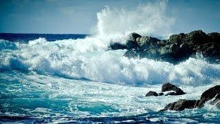 огромная волна смывает отдыхающих зевак в море