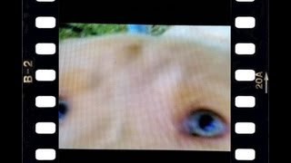 Mushroom Dog - Silent Art Film