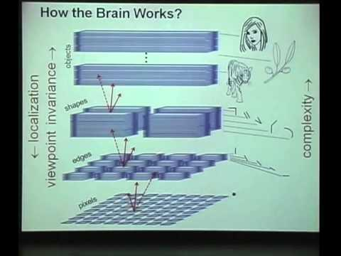 Garrett Kenyon | Cracking The Neural Code: Discovering the Language of the Brain