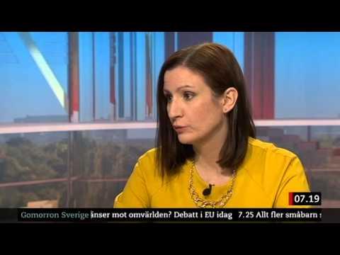 Birgitta Ohlsson (FP) frågas ut om EUs gränskontroller i oktober 2013