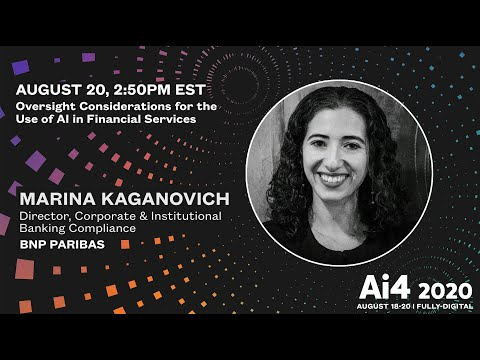 Oversight Considerations for the Use of AI in Financial Services
