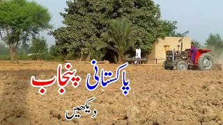Tractor In Fields | Agriculture In Punjab Pakistan