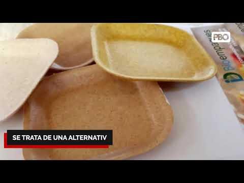 "👉 BIO PLANT ""NO SON CANCERÍGENOS"" Peruanos crean platos biodegradables a base de hojas de plátano"