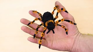Make a Creepy Halloween Spider - Prank