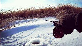 СТОЛЬКО АТАК 1 ОЙ РЫБЫ Я НЕ ВИДЕЛ НИ РАЗУ Астрахань Зимняя рыбалка 2021 Ловля щуки и окуня