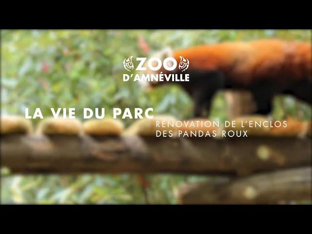 Vie du parc | Rénovation de l'espace des pandas roux