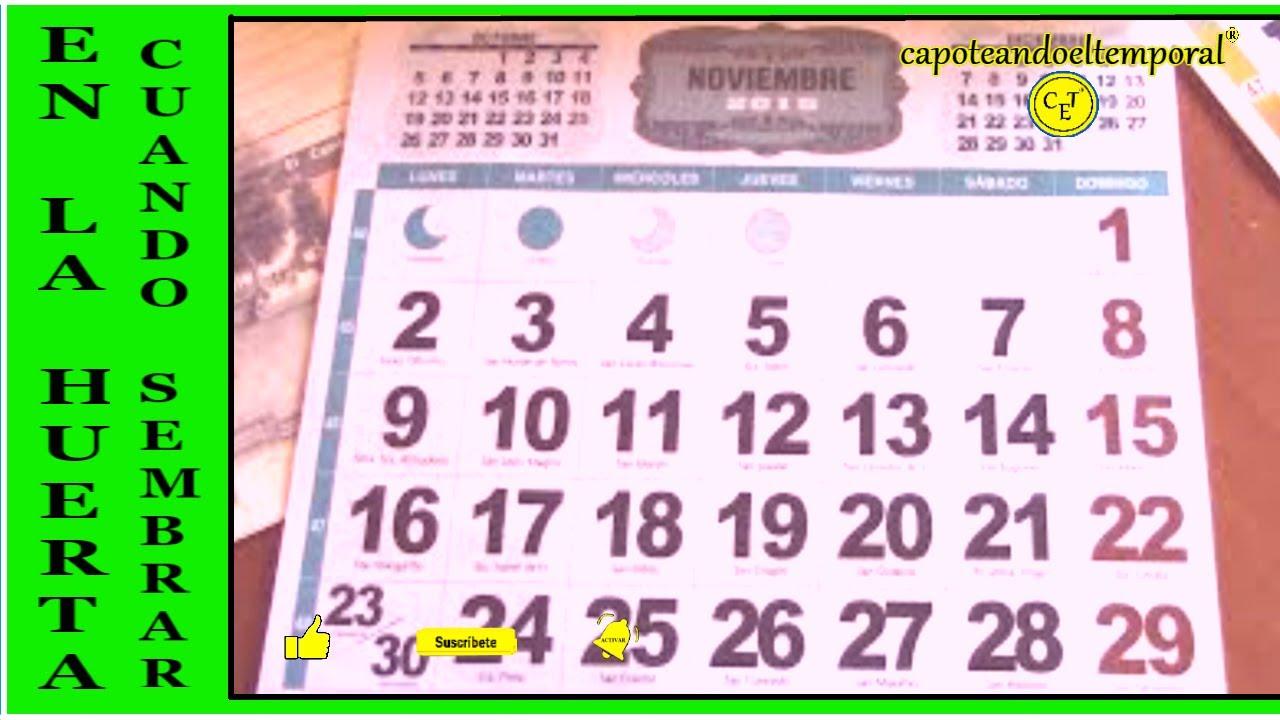 En la huerta como saber cuando sembrar podar etc Calendario 2017 con lunas