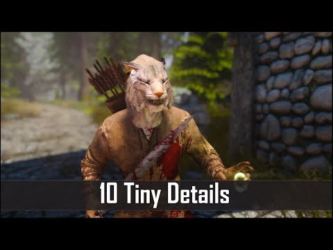 Skyrim: Yet Another 10 Tiny Details That You May Still Have Missed in The Elder Scrolls 5 (Part 25) thumbnail
