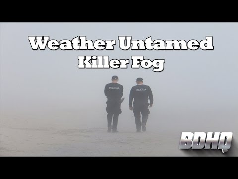 Killer Fog - Weather Untamed