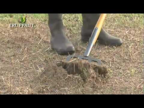 Entretien des outils de jardinage fiskars leborgne doovi for Outils de jardinage leborgne