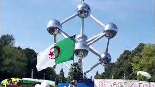 وقفة احتجاجية من الاحرار الجالية في بلجيكا