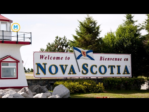 Why immigration is desperately needed in Atlantic Canada | Your Morning