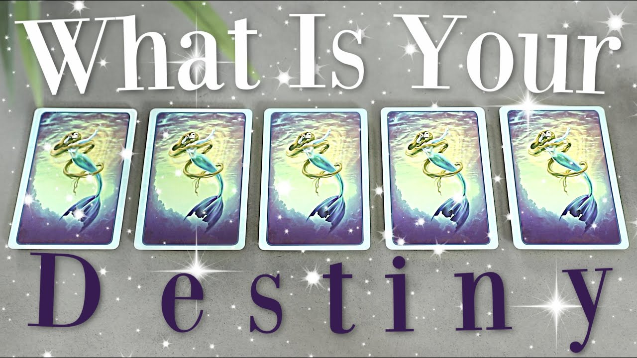 What Is Your DESTINY (PICK A CARD) 🌙✨