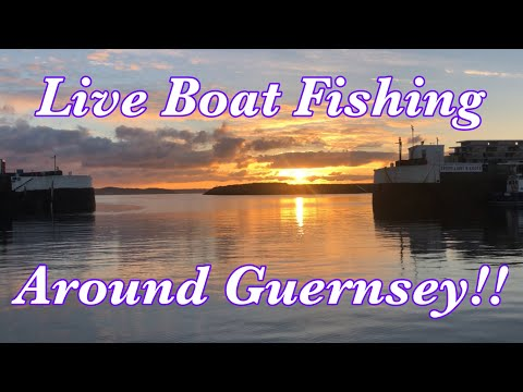 Live Fishing In Guernsey, UK