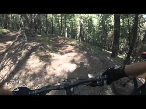 MTB Bald Mountain - Cold Springs Trail