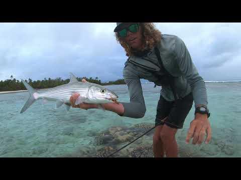 Remote Island Bonefish