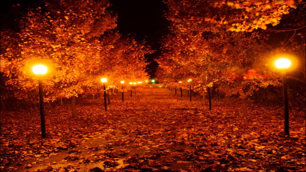 Fall Trees Wallpaper For Desktop Fang Autumn Night Youtube