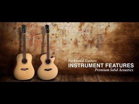 Обзор на бюджетную гитару Parkwood S27