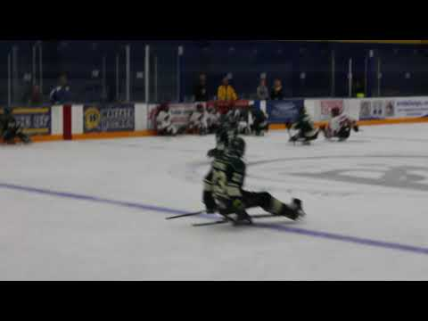 phoenix coyotes vs minnesota wild sled hockey