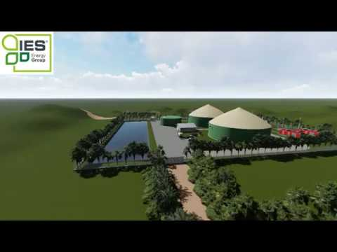 iES Energy Group // POME Biogas / Rendering 3D