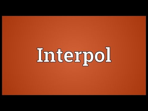 Interpol Meaning