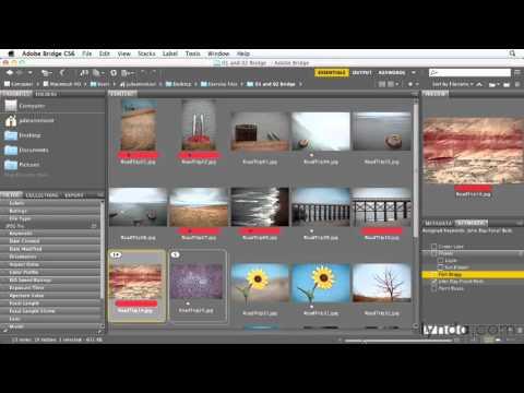 Фотошоп онлайн экспресс - фильтры инстаграм и надписи для