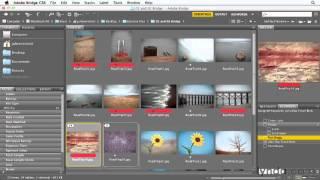 17 - Организация группы изображений в стопки  (фотошоп с нуля)