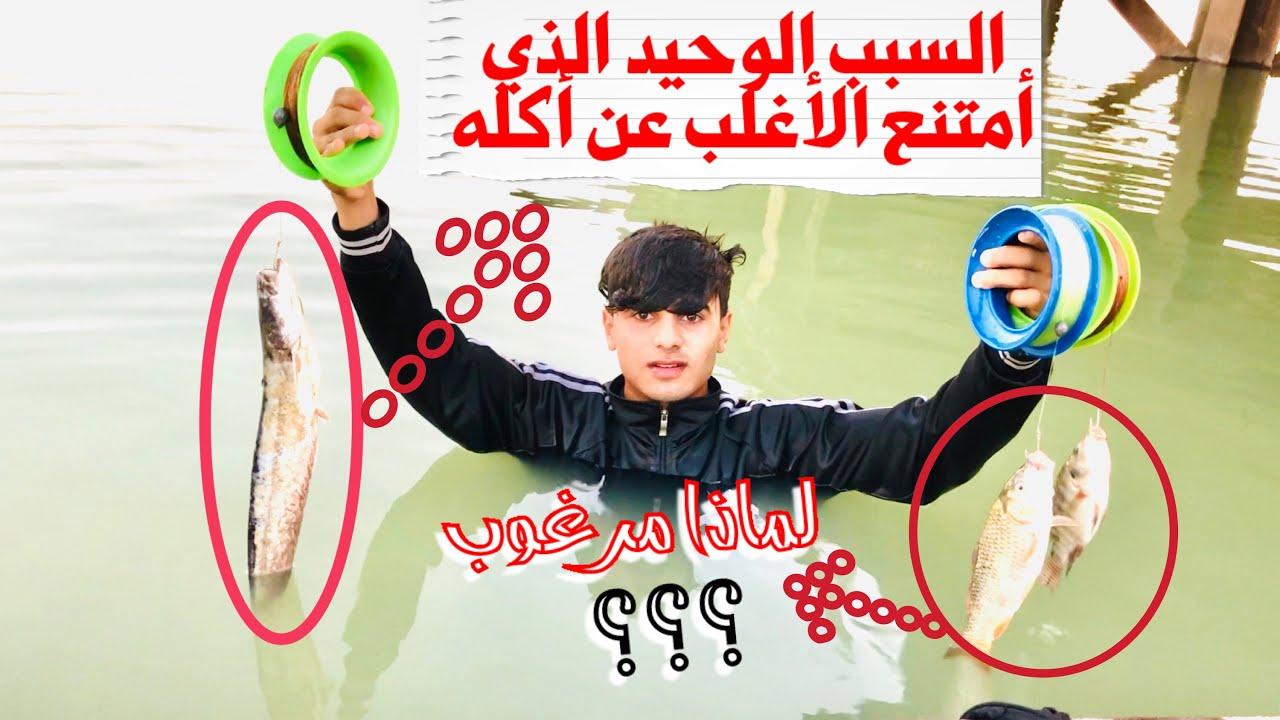 الكشف والشرح المفصل على ثلاث أنواع من الأسماك/حسين يحيى