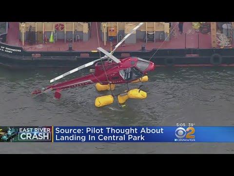 Source: Pilot Thought About Central Park