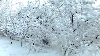 """16.12.16. Baku: - """"The Winter's Tale""""."""