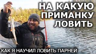 Как я научил ловить рыбу парней на какую приманку ловить осенью Полезные советы рыбакам новичкам