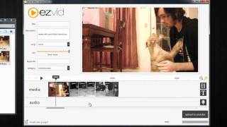 How To Upload Photos in JPG, GIF, or PNG To YouTube