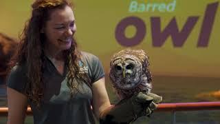 Animal Planet Animal Noise Challenge: Rainier and Andrea