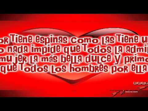 15 Imagenes De Corazones De Amor Con Frases Bonitas Youtube